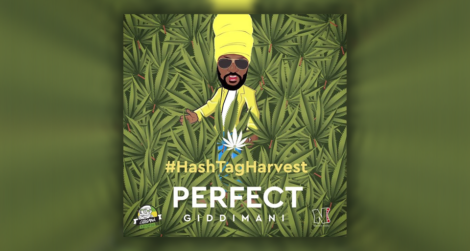 Perfect Giddimani - Got Trees feat. Young Shanty & Rasrap