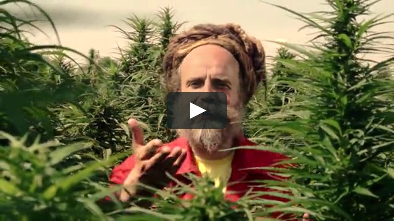 Video: Uwe Banton - Sweet Sativa